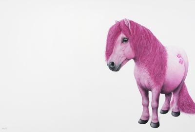 Marcel Witte - Little pony