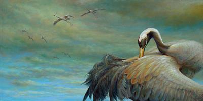 reproductie Erik van Ommen - kraanvogels