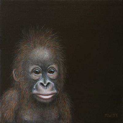 reproductie Marcel Witte - Teardrop (orang-oetan)