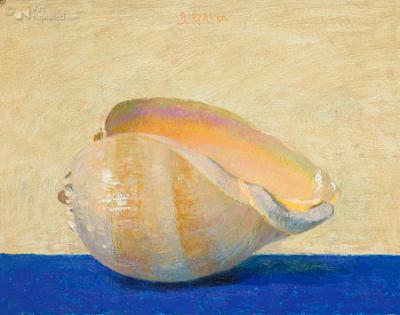 reproductie Ben Rikken - Melo Aetiopycus (geel/blauw)