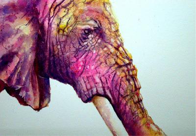 Afrikaanse olifant II