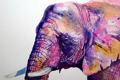 Afrikaanse olifant I