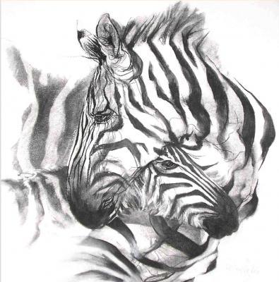 Melissa Halley - zebra met veulen