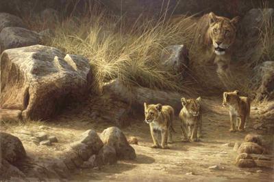 Dick van Heerde - leeuwen