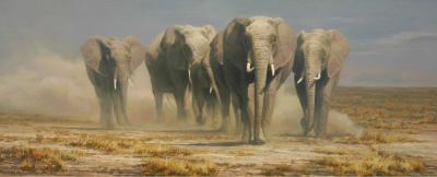 Dick van Heerde - olifanten