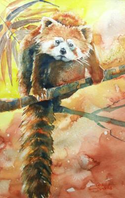 Gerard Hendriks - kleine panda