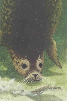 Jeroen Verhoeff - zeehond en schol