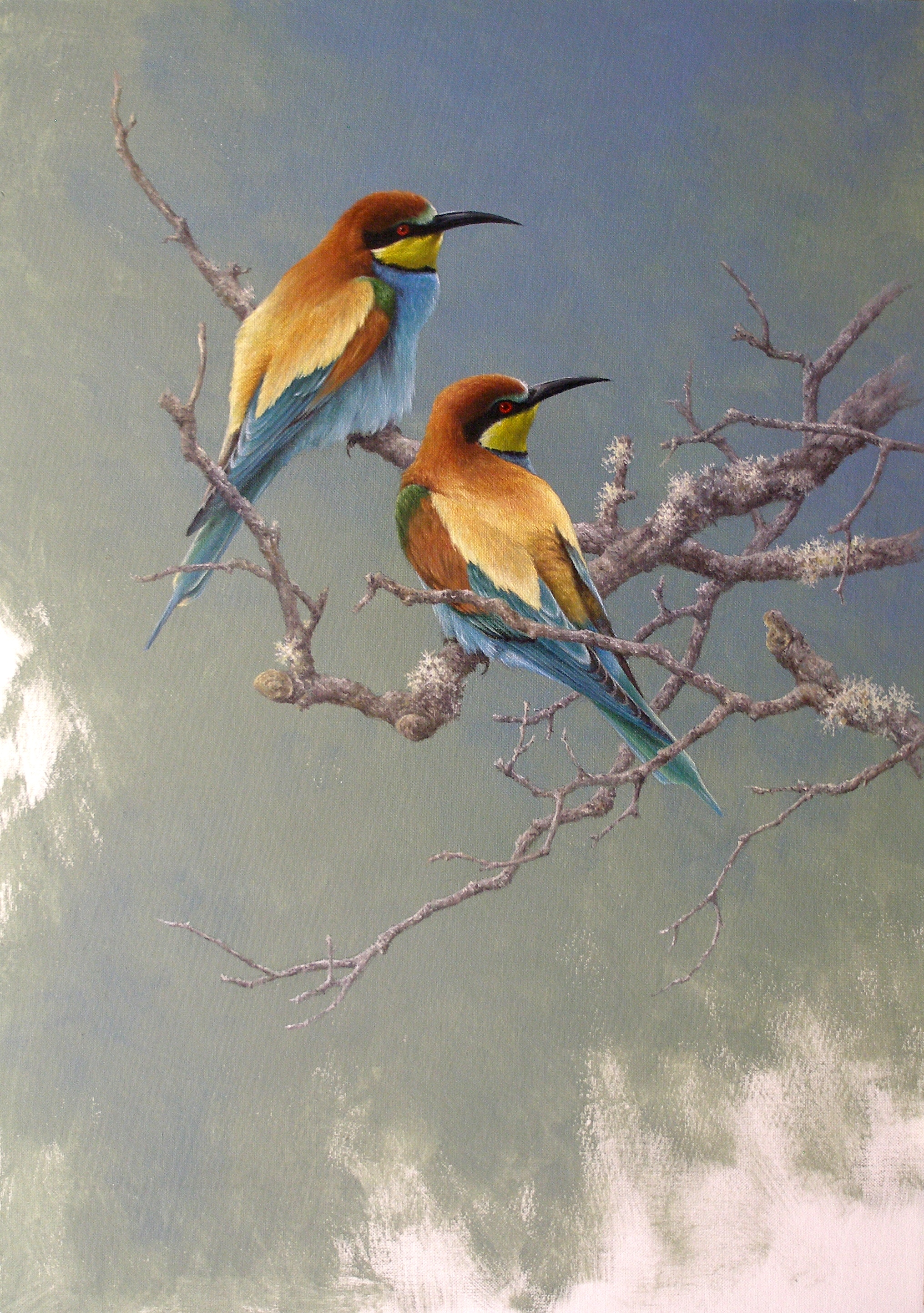 an analysis of the story the bee eater Selected bibliography birdlife international 2009 white j, d ksepka, a smith, m norell 2009 combined phylogenetic analysis of a new north american fossil species confirms widespread eocene molecular phylogenetics of the bee-eaters (aves: meropidae) based on nuclear and.